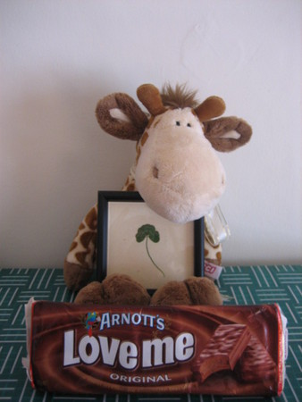 My only trinkets from Oz - A giraffe my work gave me, a clover from BobZoRr and a pack of Tim Tams. I also have  tube of vegemite tucked away for times of need.